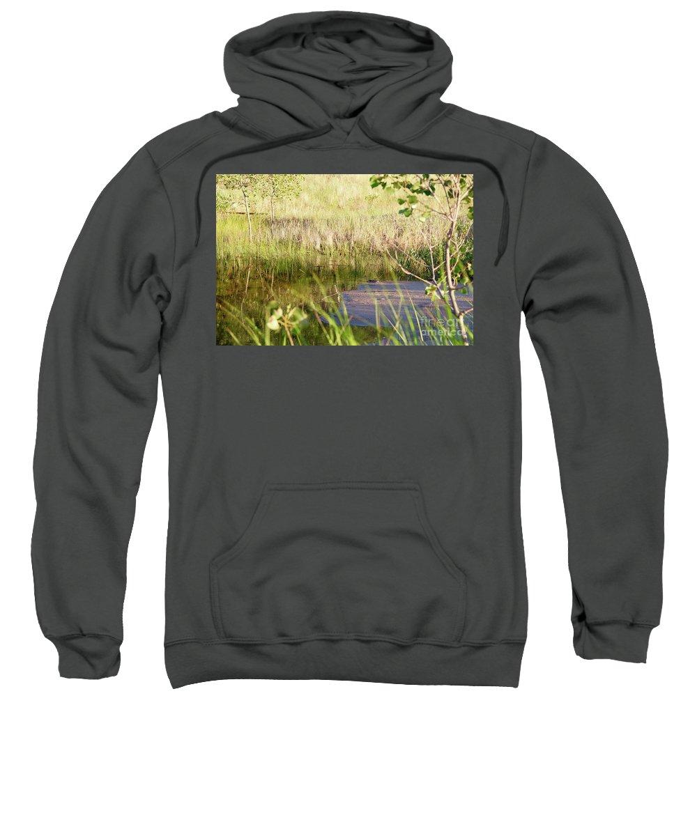 Beach Sweatshirt featuring the photograph Hidden Grass by Lauren Mohr
