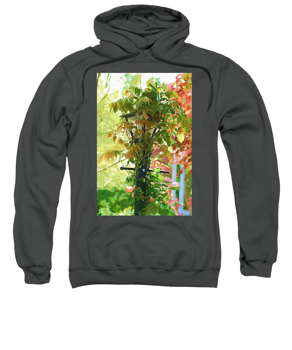 Lamp Sweatshirt featuring the photograph Hidden Lamp by Donna Bentley
