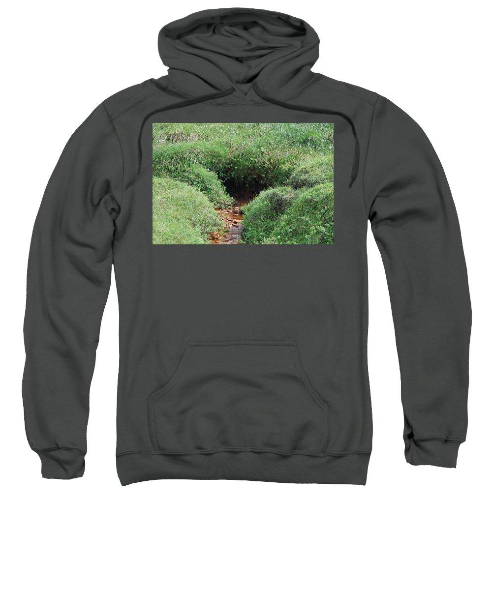 Water Sweatshirt featuring the photograph Hiding Place by Kristen Bird