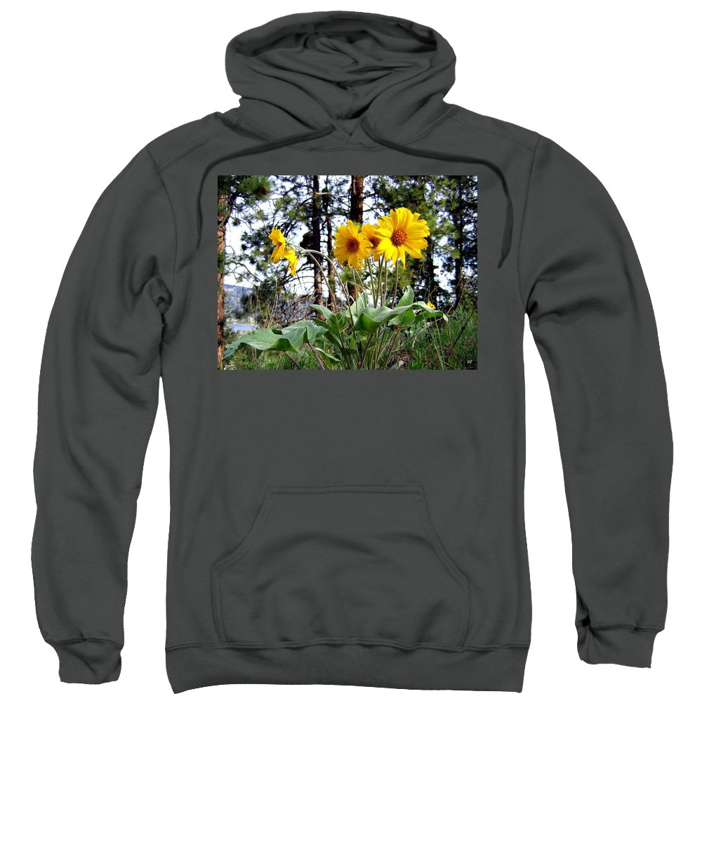 Sunflowers Sweatshirt featuring the photograph High In The Hills by Will Borden