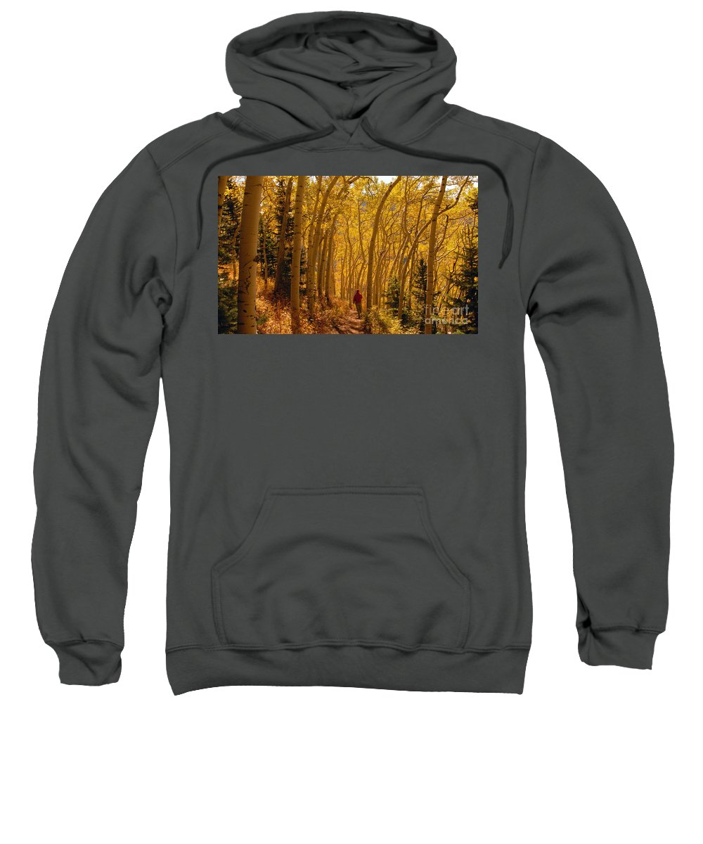 Fall Sweatshirt featuring the photograph Hiking In Fall Aspens by David Lee Thompson