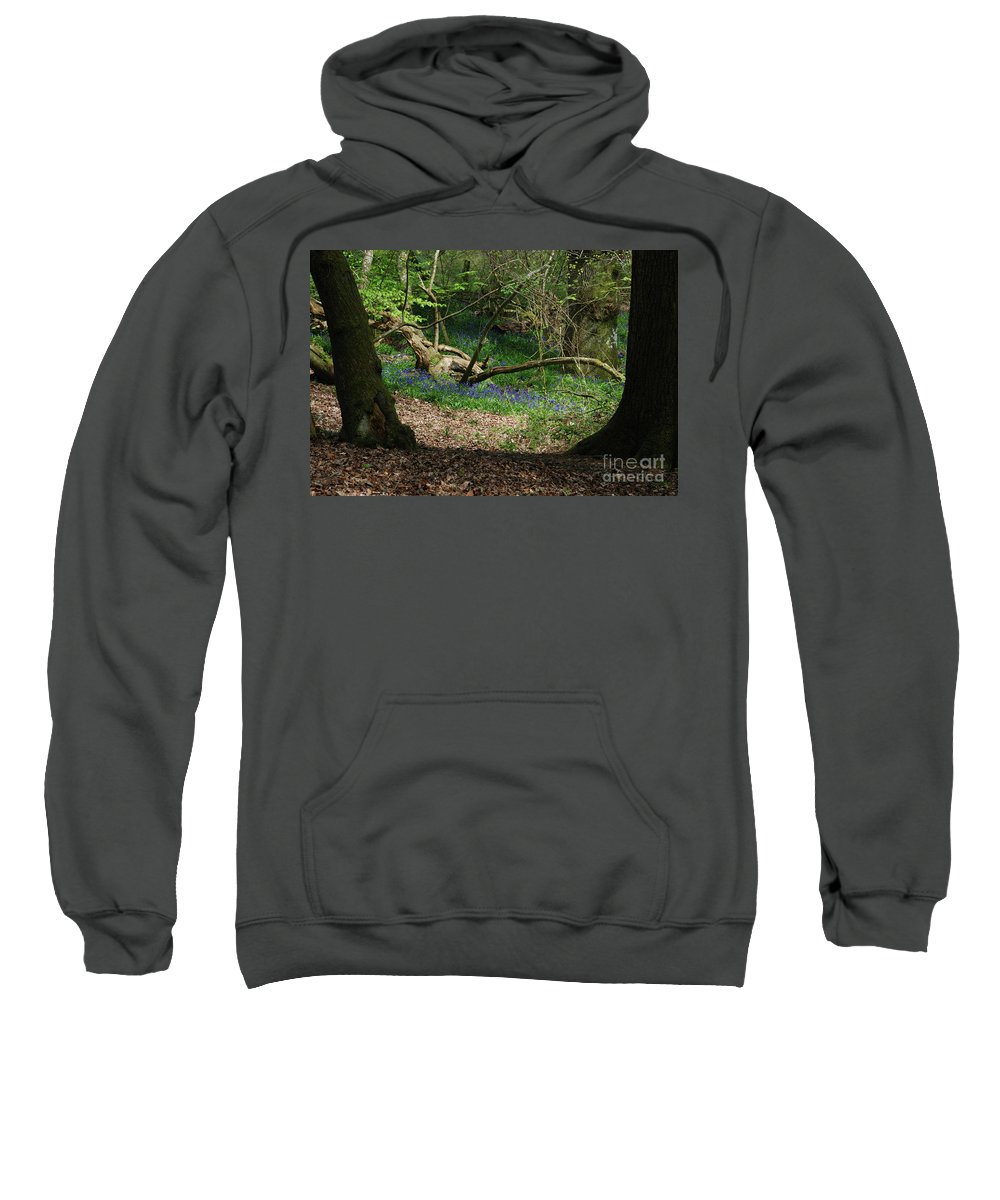 Sweatshirt featuring the photograph Hint Of Buebell by Richard Gibb
