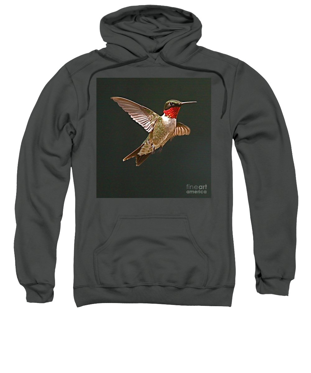 Humming Bird Sweatshirt featuring the photograph Hmmmmmmmmmmmm by Robert Pearson