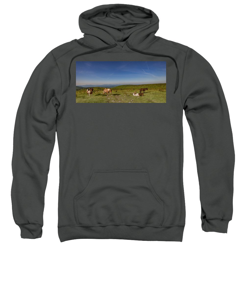Virginia Sweatshirt featuring the photograph Home On Therange by Mike Yeatts