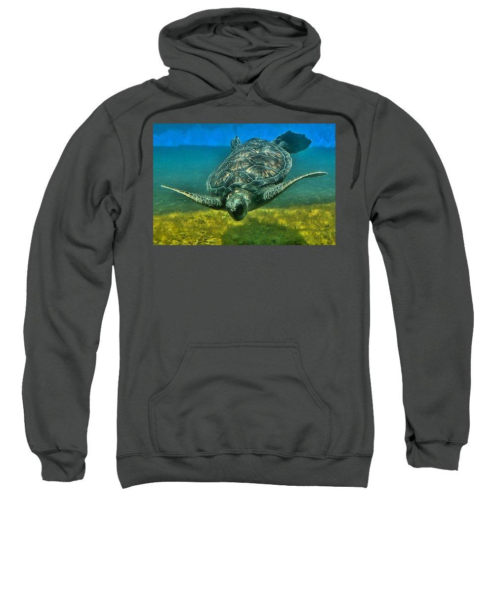 Turtle Sweatshirt featuring the photograph Honu by DJ Florek