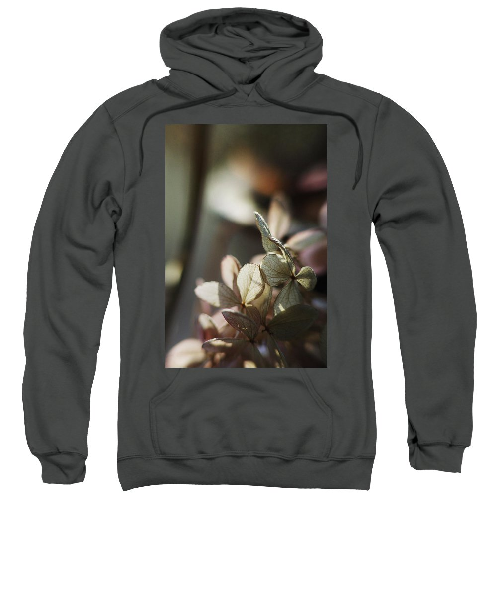 Flowers Sweatshirt featuring the photograph Hope... by Arthur Miller