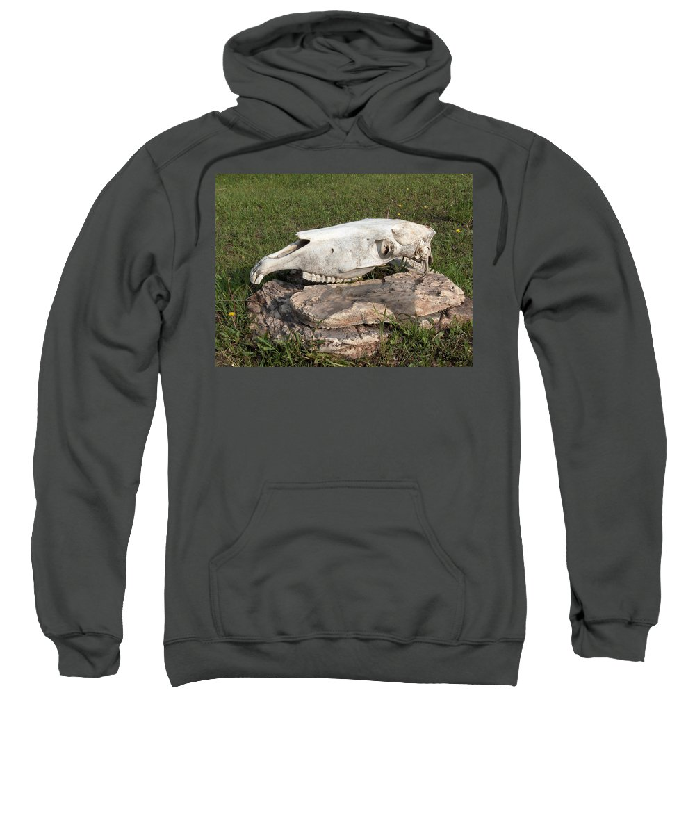Horse Horses Spiritual Remembering Skull Spirits Ranch Herd Animals Sweatshirt featuring the photograph Horse Spirit 1 by Andrea Lawrence