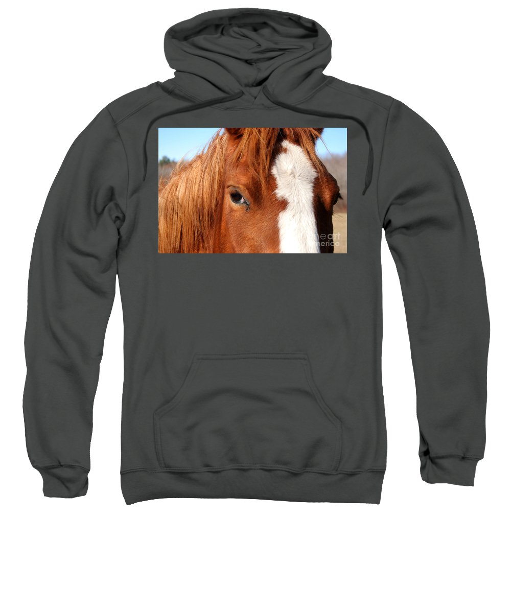Horse Sweatshirt featuring the photograph Horse's Mane by Thomas Marchessault