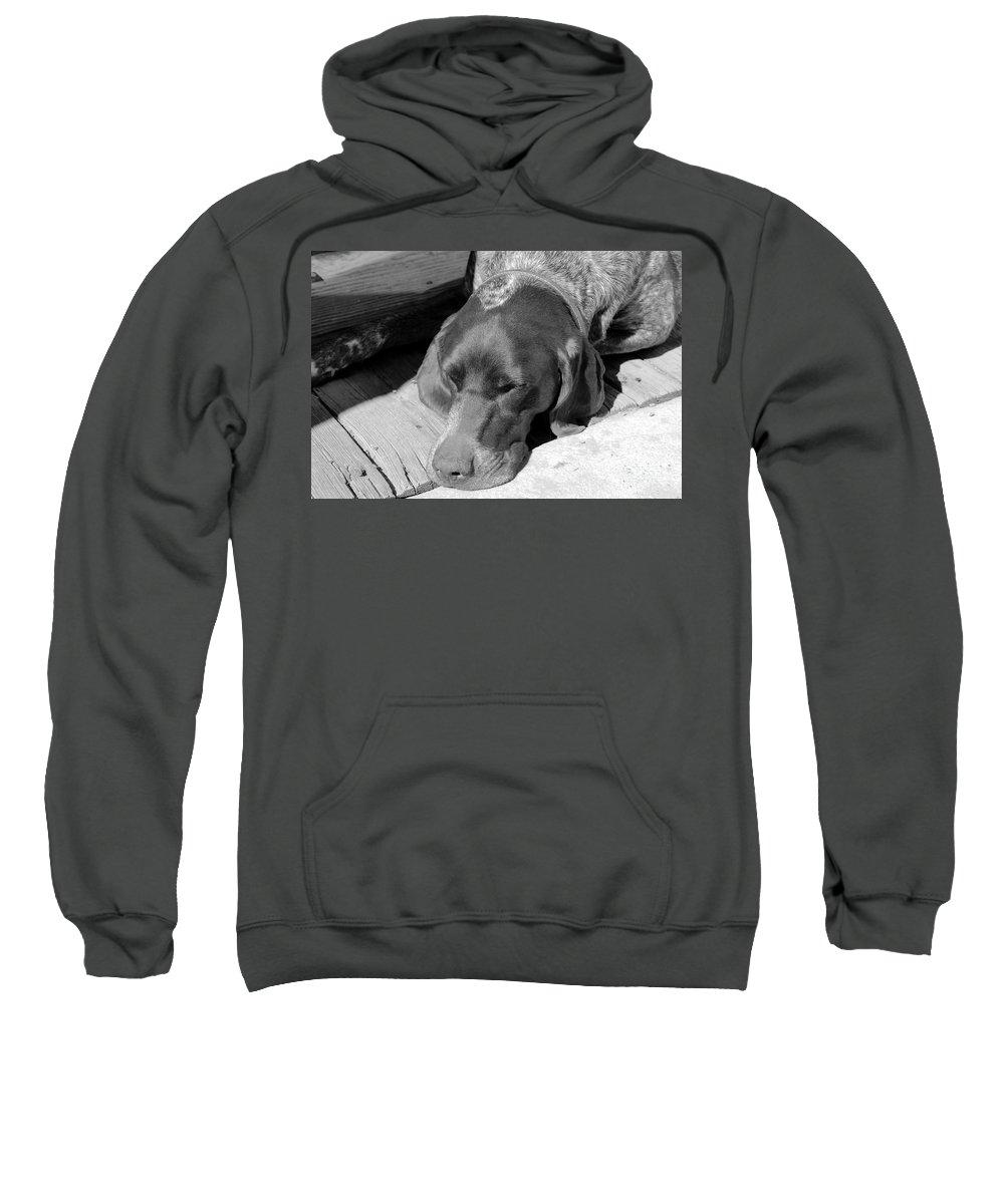 Dog Sweatshirt featuring the photograph Hound Dog by David Lee Thompson