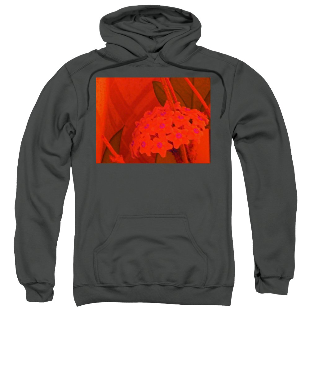 Abstract Sweatshirt featuring the digital art Hoya by Lenore Senior