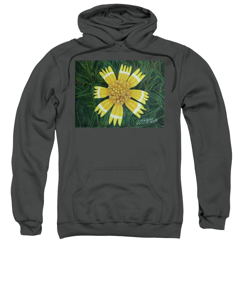 Fuqua - Artwork Sweatshirt featuring the drawing Huisache Daisy by Beverly Fuqua