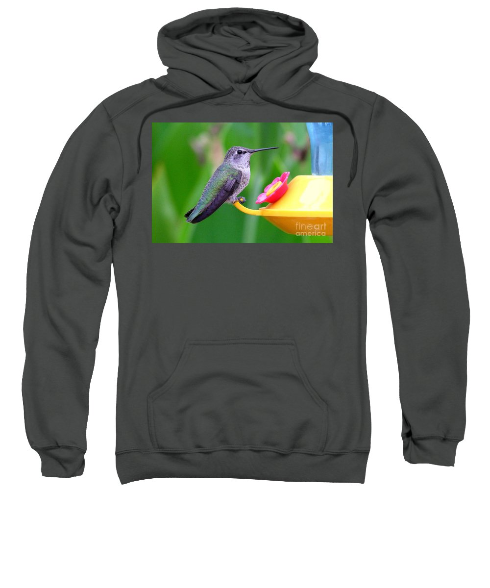 Green Sweatshirt featuring the photograph Hummingbird 32 by Mary Deal