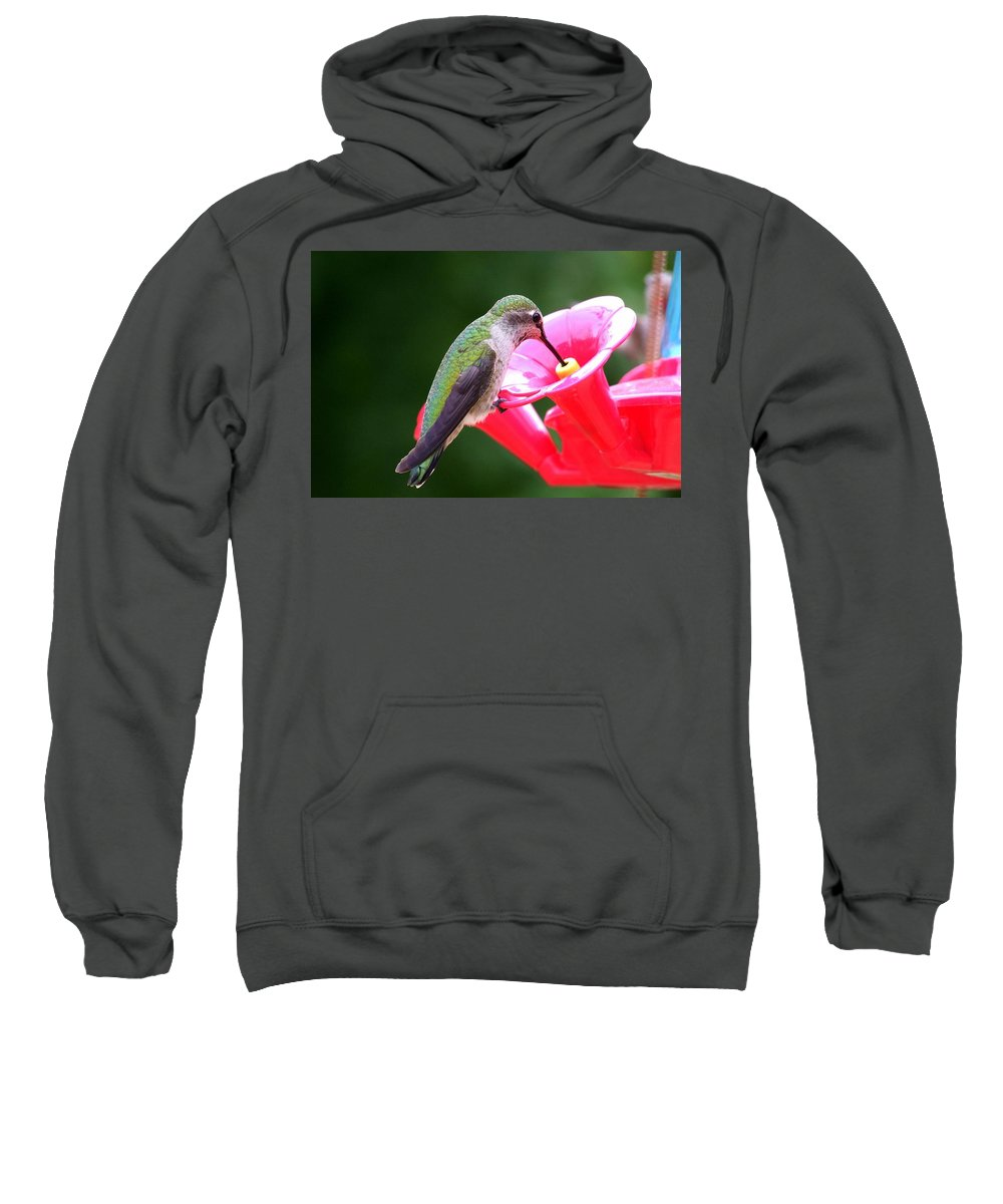 Red Sweatshirt featuring the photograph Hummingbird 33 by Mary Deal