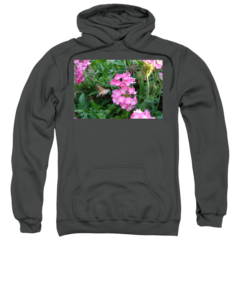 Flower Sweatshirt featuring the photograph Hummingbird Moth On Pink Verbena by Susan Baker