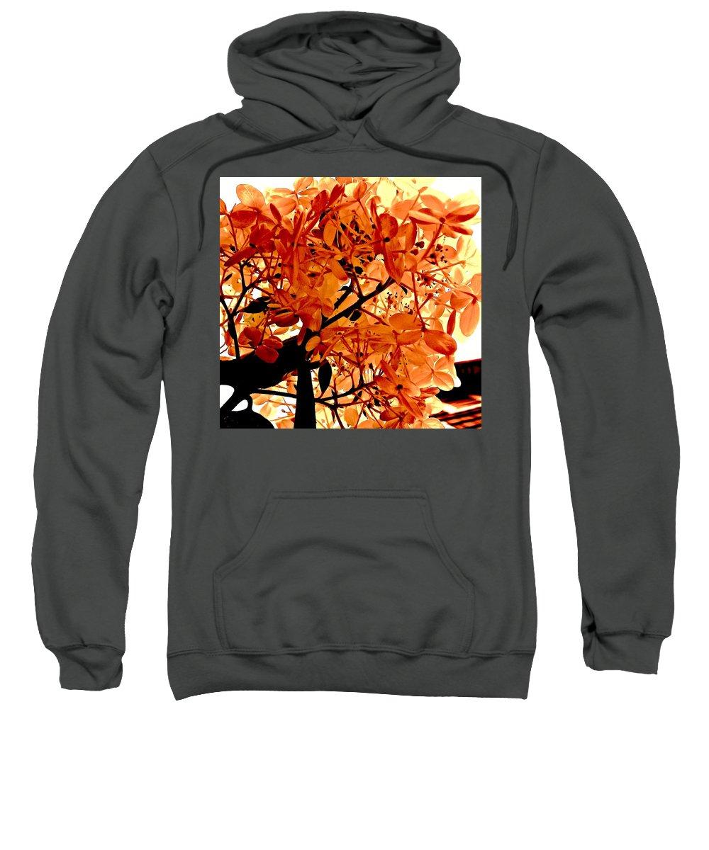 Macro Sweatshirt featuring the photograph Hydrangea Macro In Autumn by Elizabeth Tillar