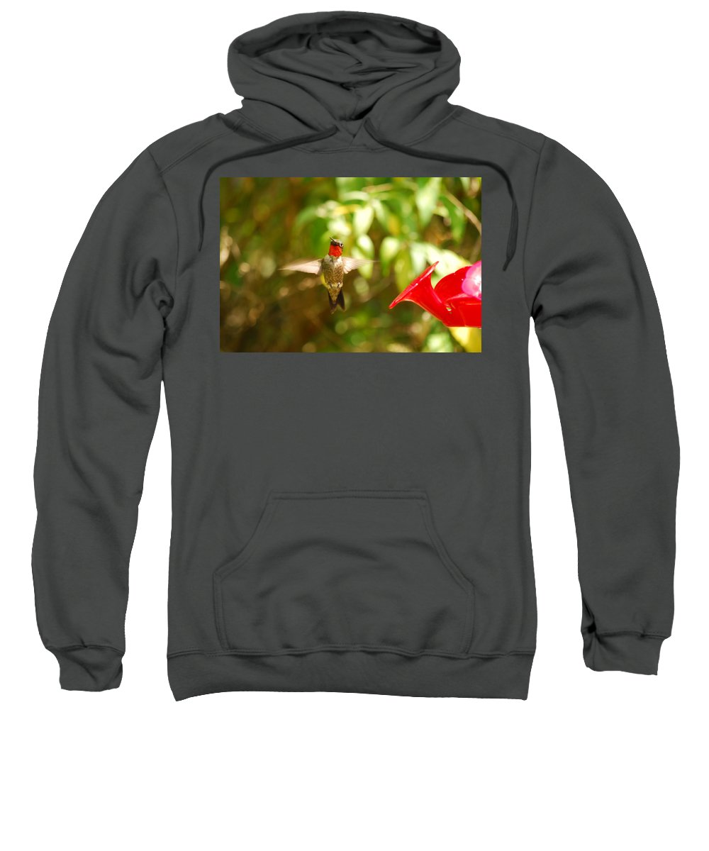 Hummingbird Sweatshirt featuring the photograph I Can Fly by Lori Tambakis