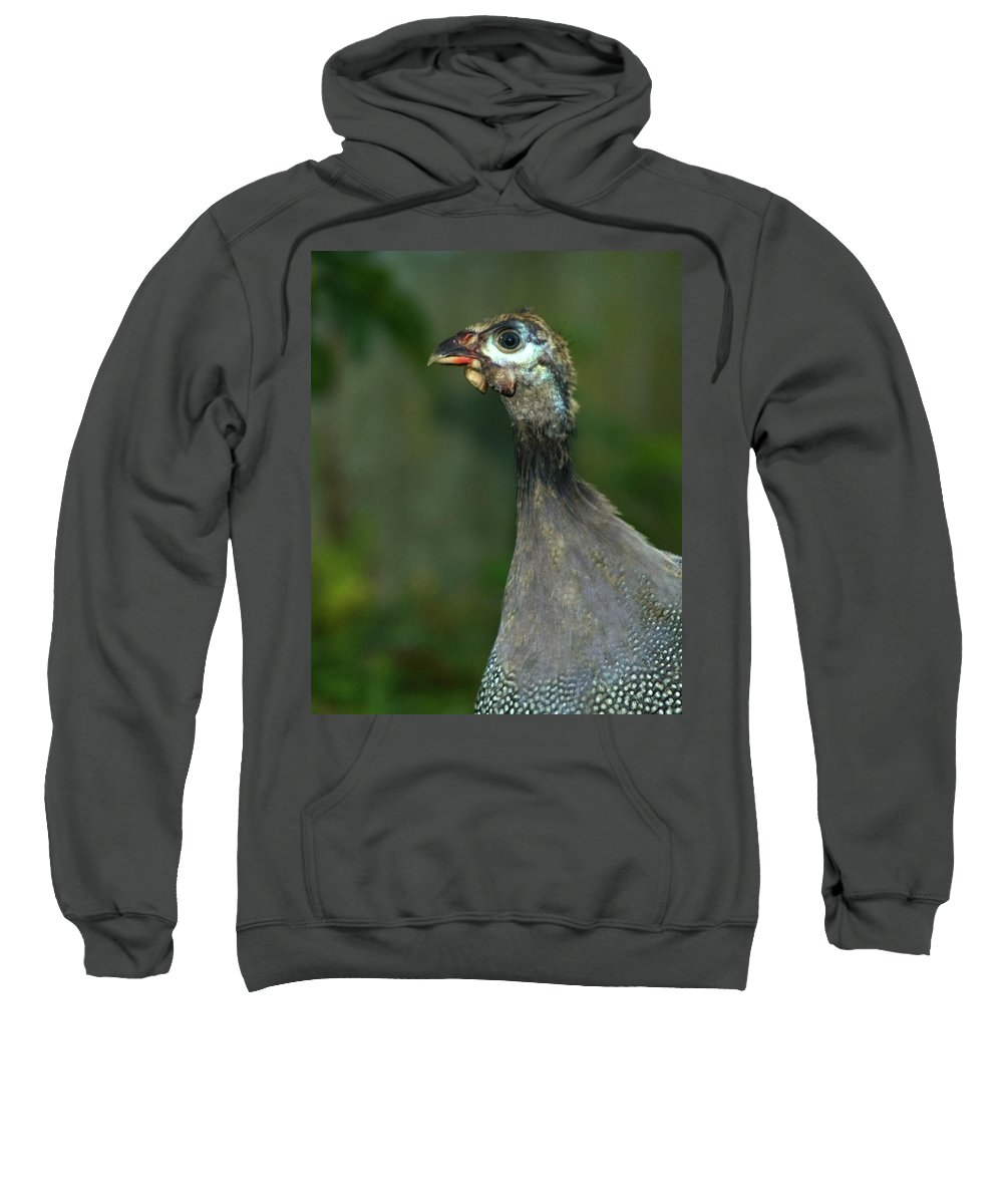 Guinea Sweatshirt featuring the photograph I See You by Gaby Swanson