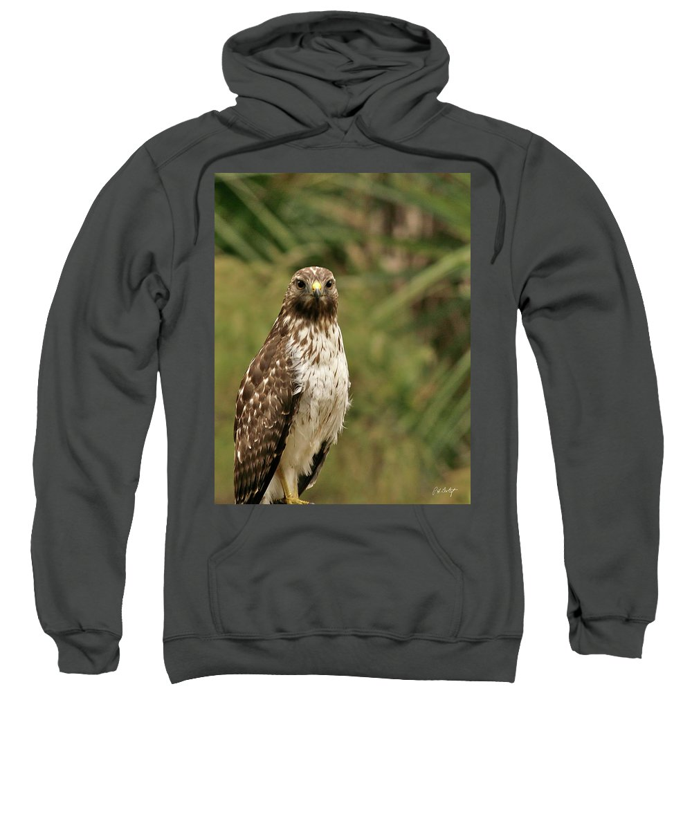 Bird Sweatshirt featuring the photograph I See You by Phill Doherty