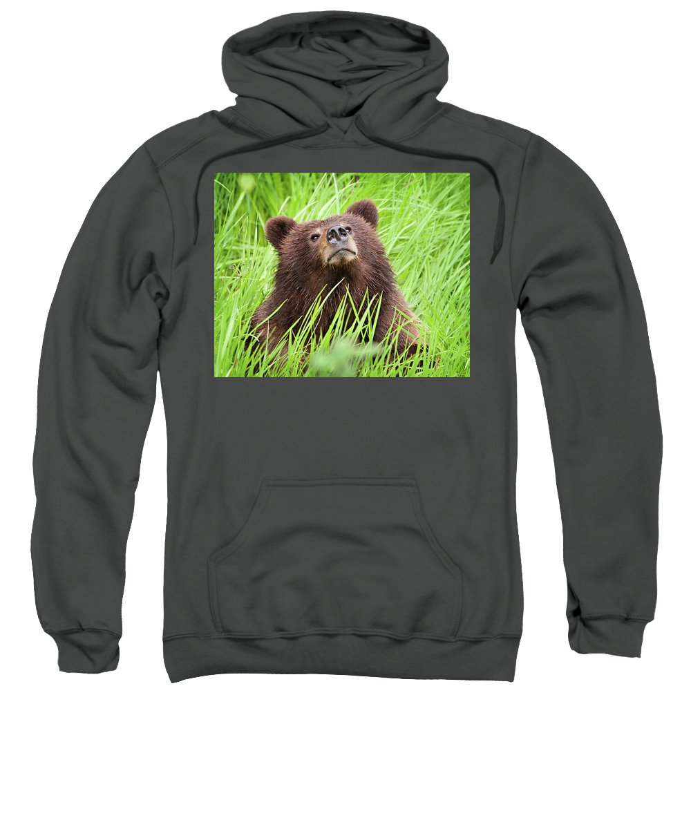 Alberta Sweatshirt featuring the photograph I Smell Something Good To Eat by Heidi Brand