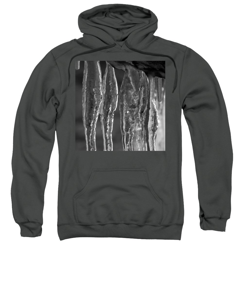 Ice Sweatshirt featuring the photograph Ice Ice Baby by Trish Hale