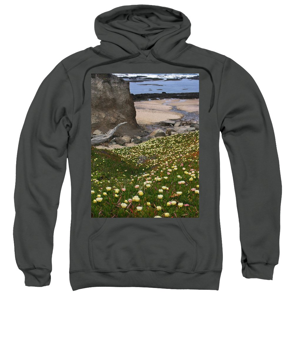Landscape Sweatshirt featuring the photograph Ice Plants On Moss Beach by Karen W Meyer
