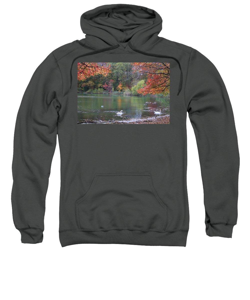 Plant Sweatshirt featuring the photograph An Idyllic Autumn by Dora Sofia Caputo Photographic Design and Fine Art