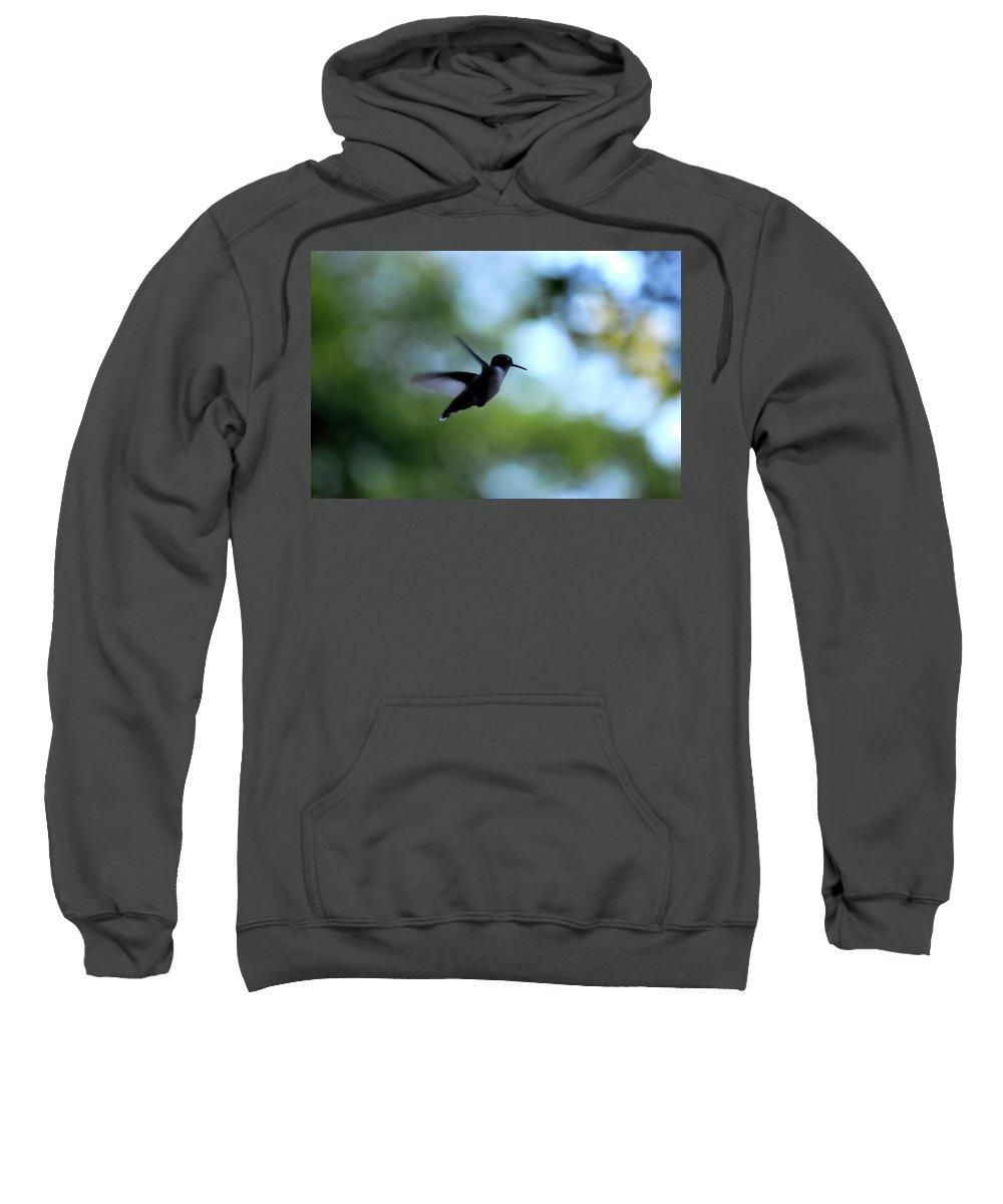 Hummingbird Sweatshirt featuring the photograph I'm On My Way by Lori Tambakis