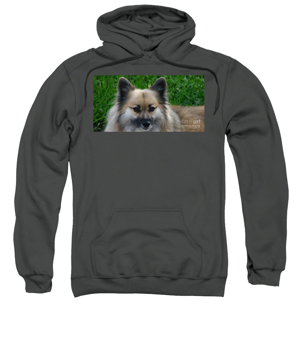 Patzer Sweatshirt featuring the photograph Im Swedish by Greg Patzer