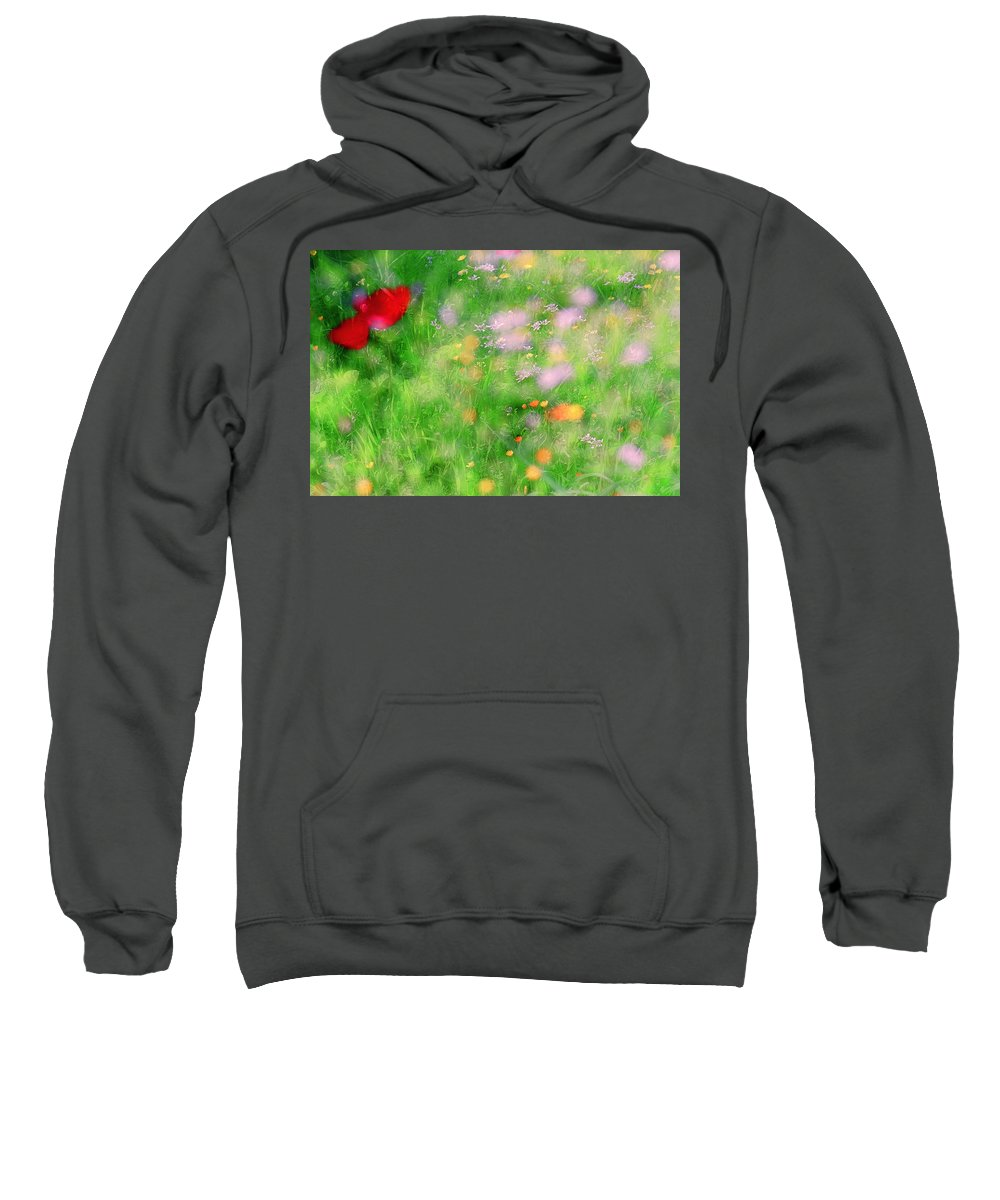 Impressionistic Sweatshirt featuring the photograph Impressionistic Blossom 5 At Britain Park by Dubi Roman