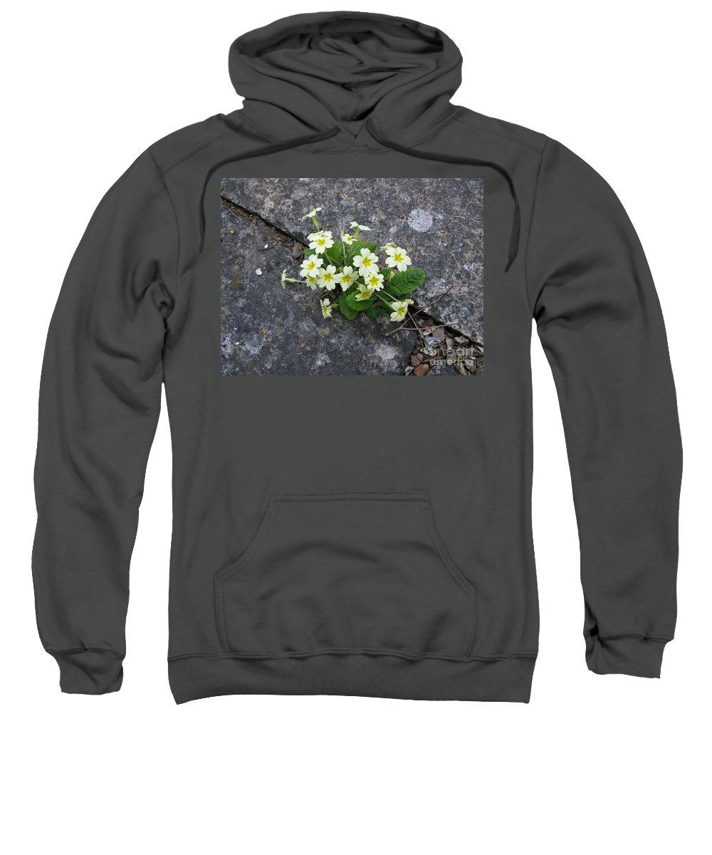 Primrose Sweatshirt featuring the photograph In The Garden Path by Ann Horn
