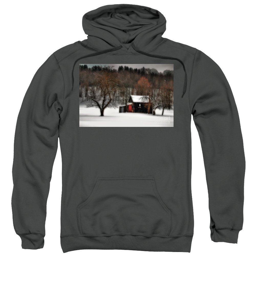 Winter Sweatshirt featuring the photograph In Winter by Lois Bryan
