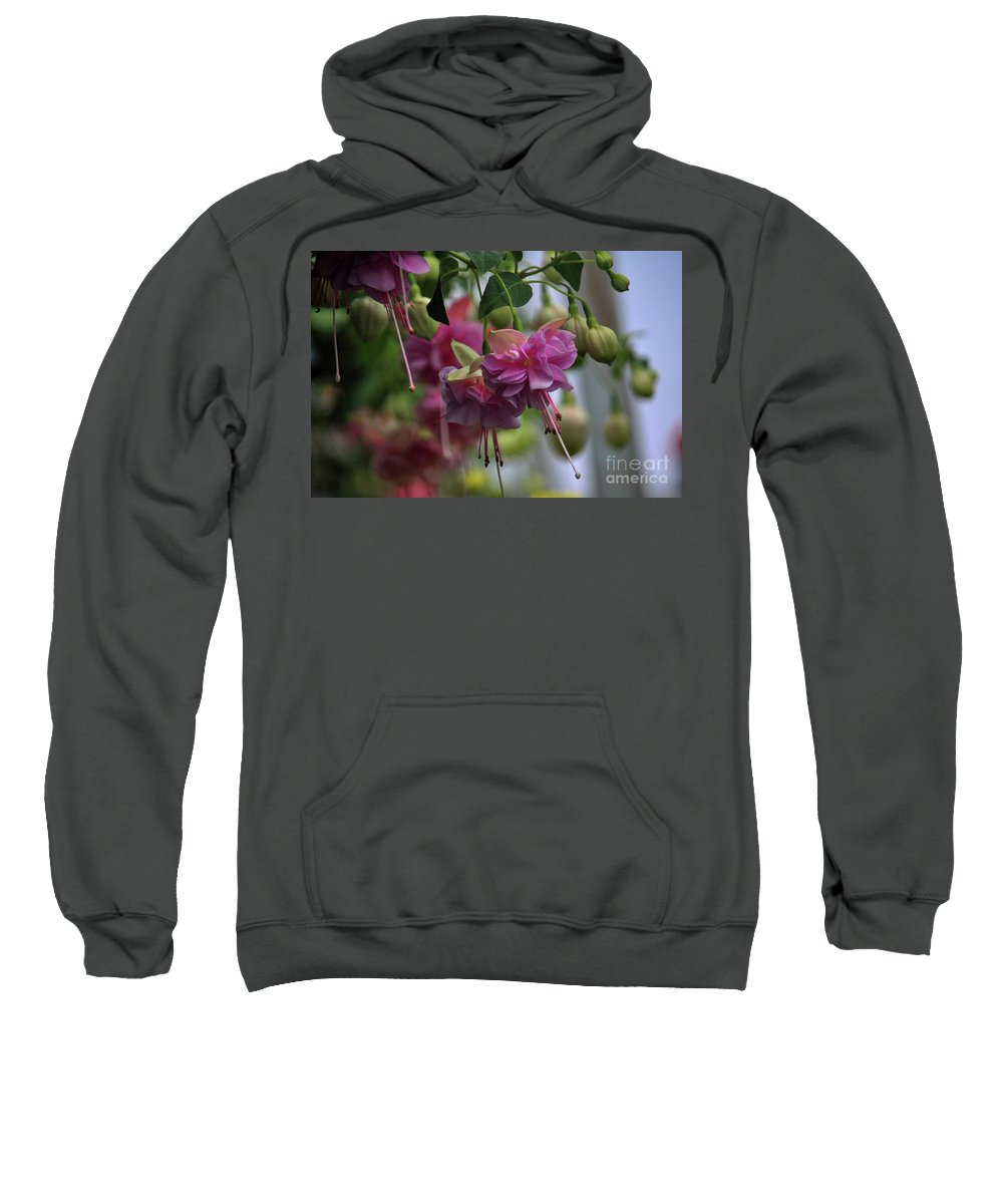 Spring Sweatshirt featuring the photograph Incredible Fuschia by Laura Birr Brown