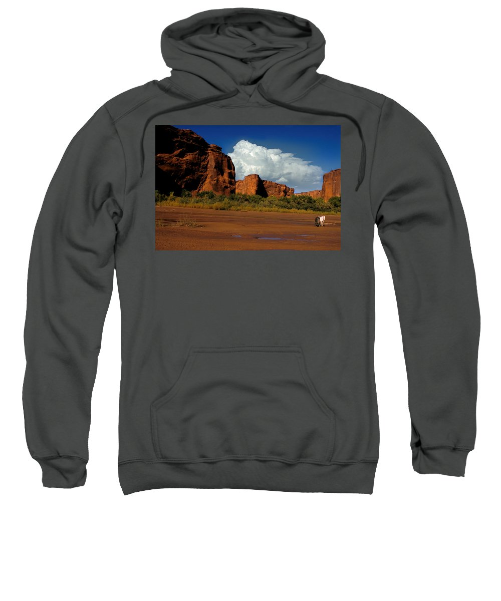 Horses Sweatshirt featuring the photograph Indian Ponies In The Canyon by Jerry McElroy