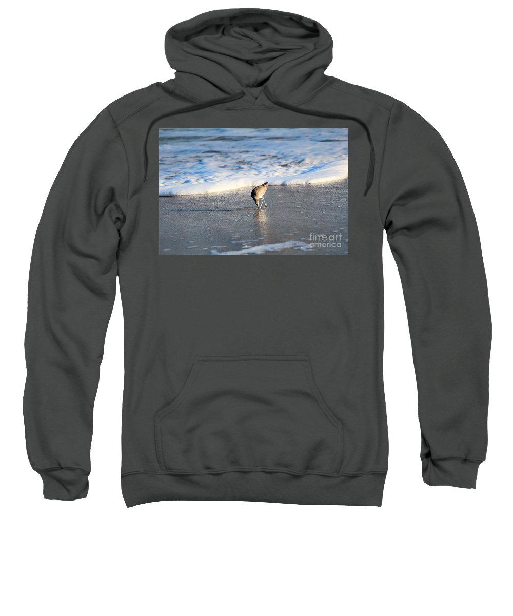 Willet Sweatshirt featuring the photograph Interesting Find by Karin Everhart