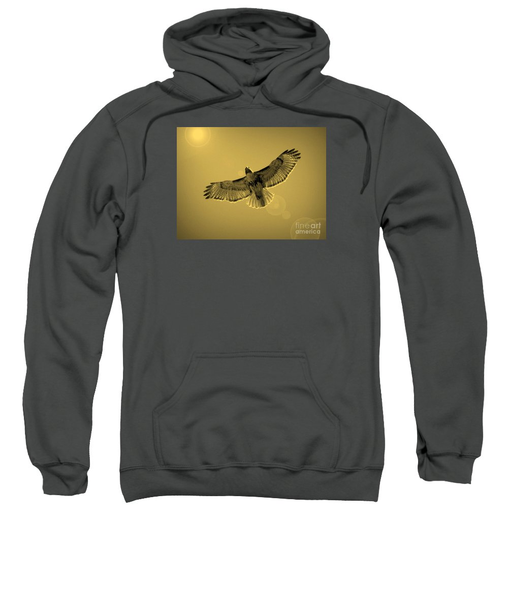 Red-shouldered Hawk Sweatshirt featuring the photograph Into The Light - Sepia by Carol Groenen
