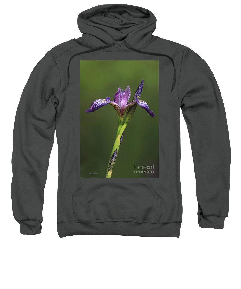 Iris Sweatshirt featuring the photograph Iris At The Manor by Deborah Benoit