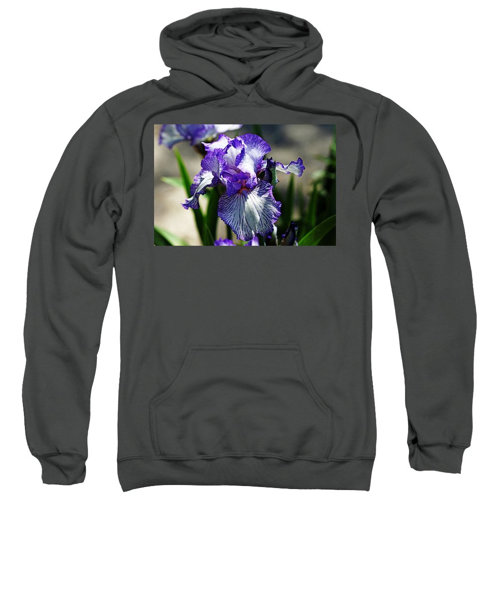 Iris Sweatshirt featuring the photograph Iris Dressed For Royalty by Debbie Oppermann