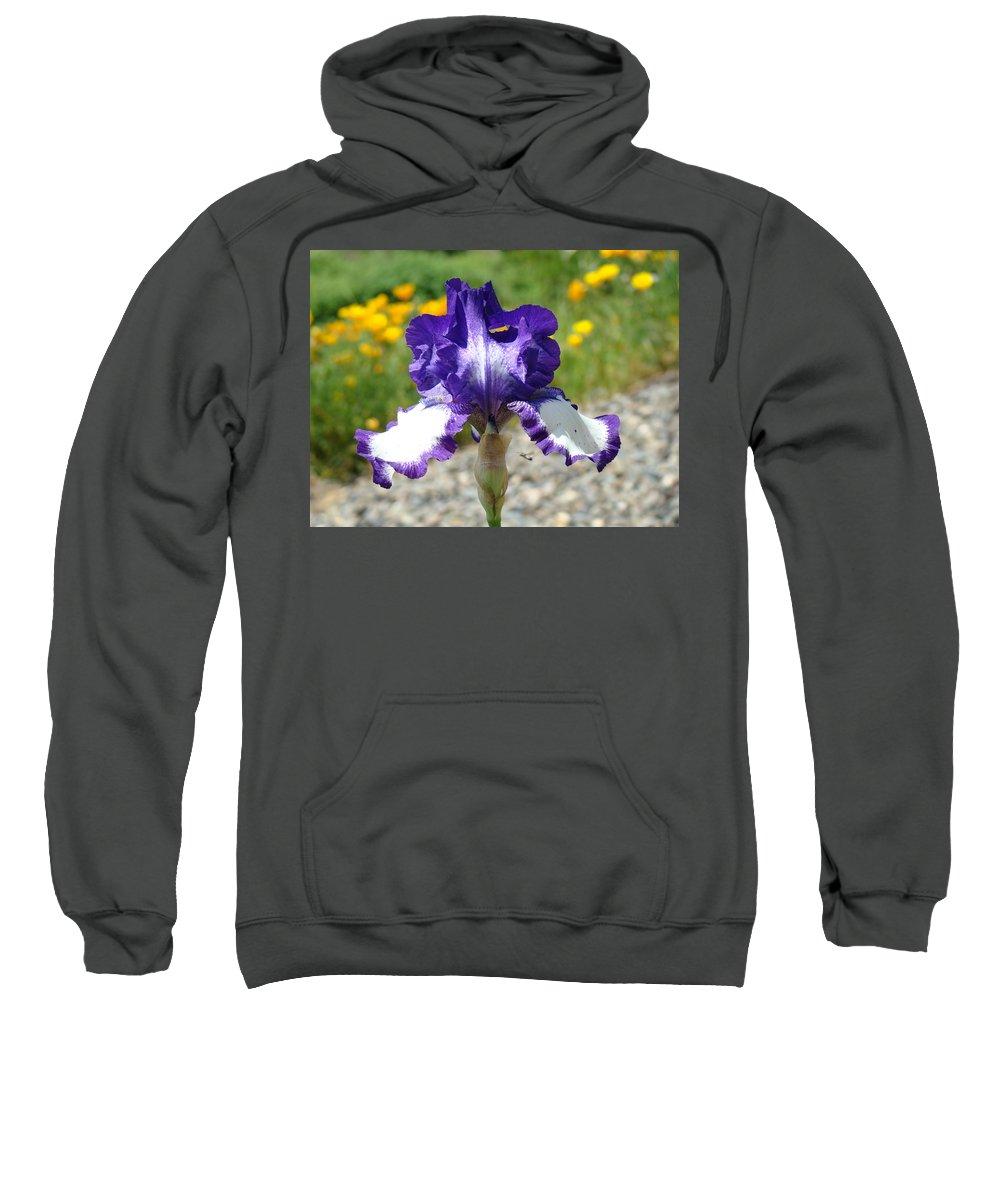 �irises Artwork� Sweatshirt featuring the photograph Iris Flower Purple White Irises Nature Landscape Giclee Art Prints Baslee Troutman by Baslee Troutman