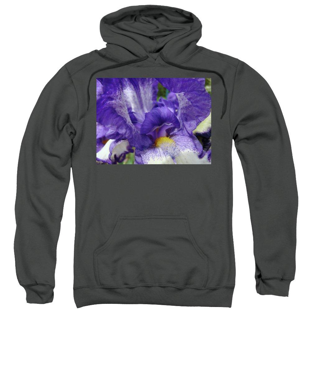 Iris Sweatshirt featuring the photograph Irises Artwork Purple Iris Flowers Art Prints Canvas Baslee Troutman by Baslee Troutman