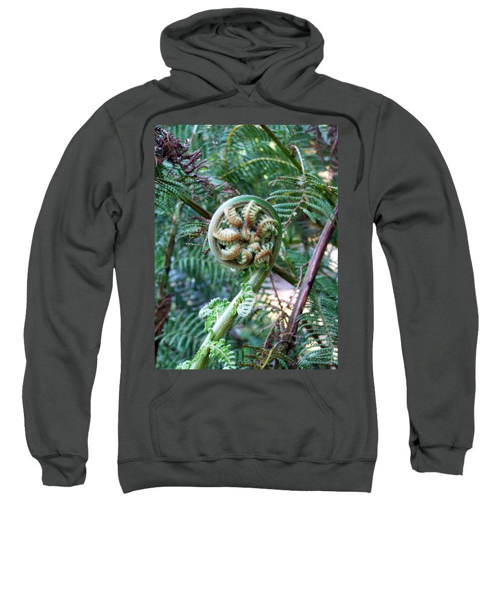 Irish Sweatshirt featuring the photograph Irish Fiddler by Teresa Mucha