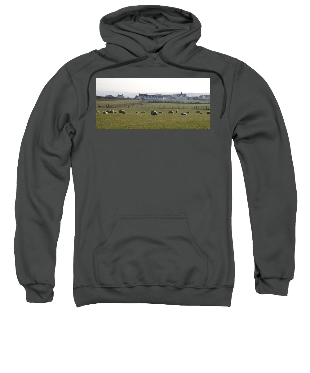 Farm Sweatshirt featuring the photograph Irish Sheep Farm by Henri Irizarri