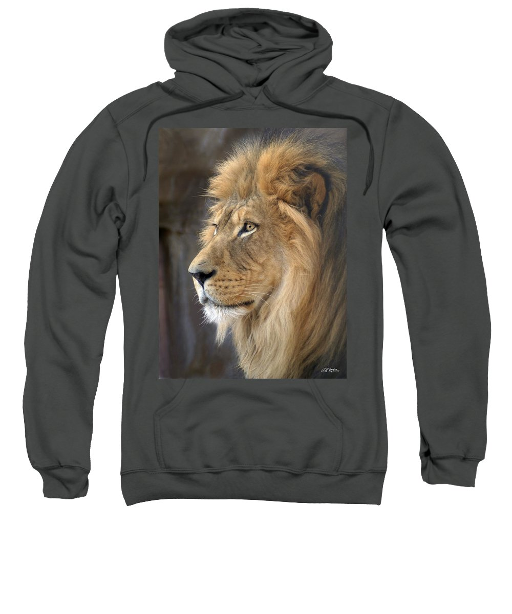 Lions Sweatshirt featuring the photograph Israel by Bill Stephens