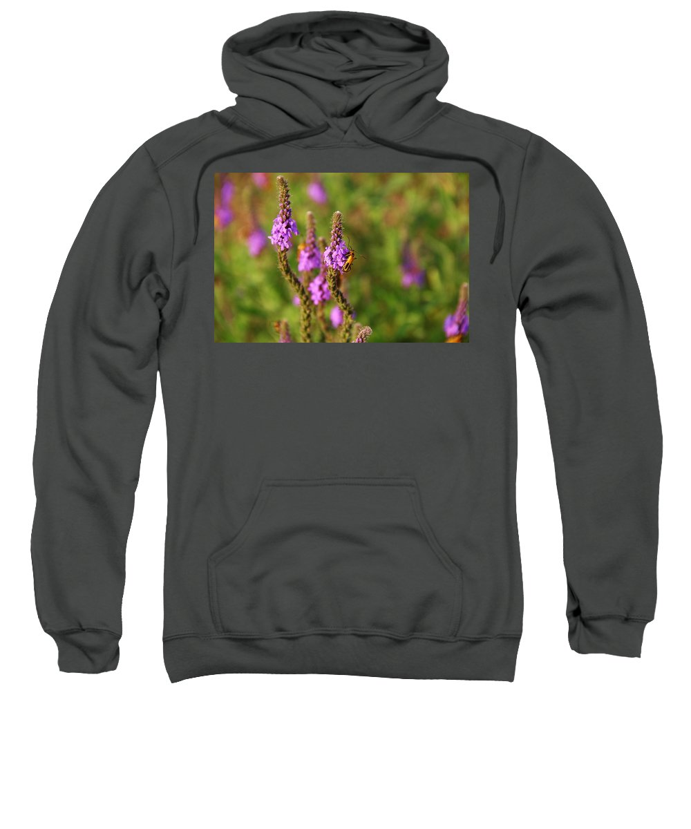 Soldier Sweatshirt featuring the photograph It's A Bugs Life by Peter Bouman