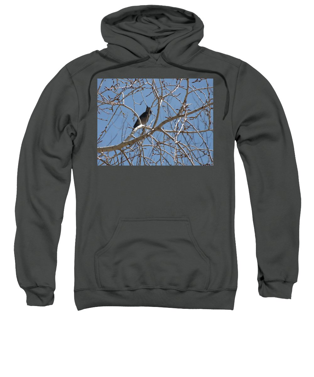 Birds Sweatshirt featuring the photograph Its A Good Day by Sarojinie De Silva