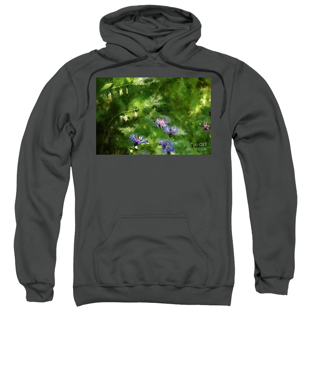 Digital Photo Sweatshirt featuring the photograph It's A Still Life I Want To Color by David Lane