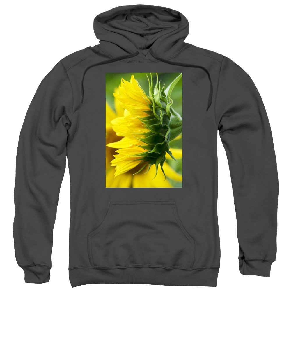 Flower Sweatshirt featuring the photograph It's All About The View by Tiffany Erdman