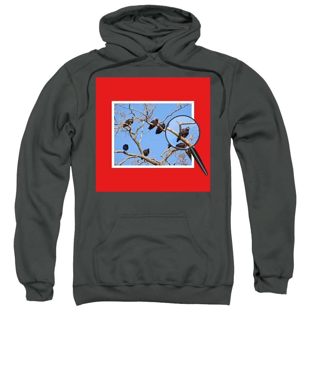Buzzards Sweatshirt featuring the photograph I've Got My Eye On You by Gary Adkins