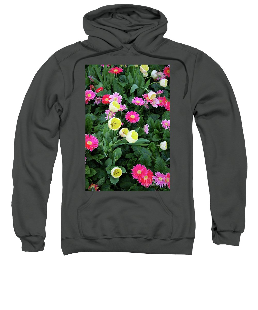 Flowers Sweatshirt featuring the photograph Ivory Tulips And Salmon Daisys by Rich Walter