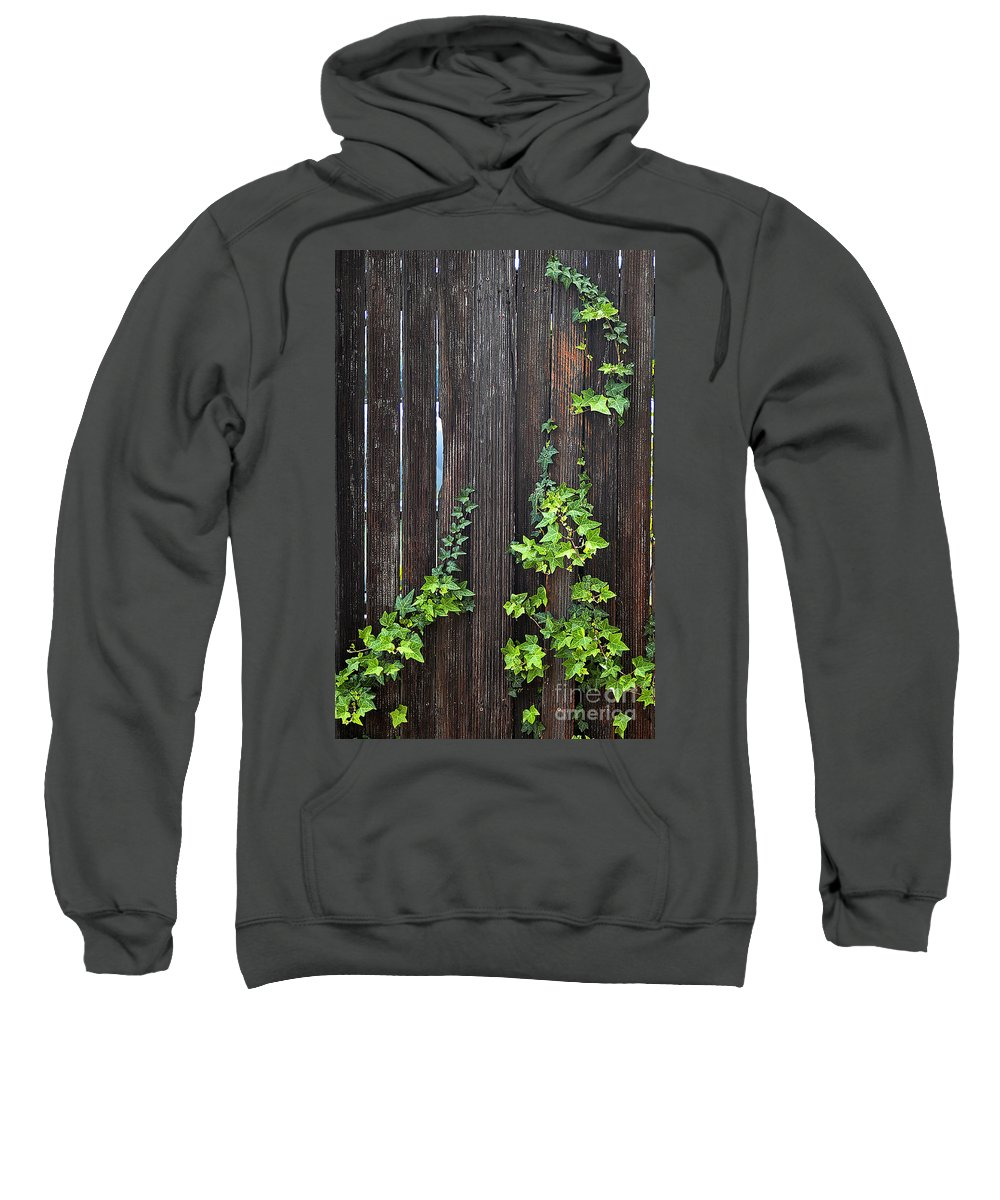 Clay Sweatshirt featuring the photograph Ivy On Fence by Clayton Bruster