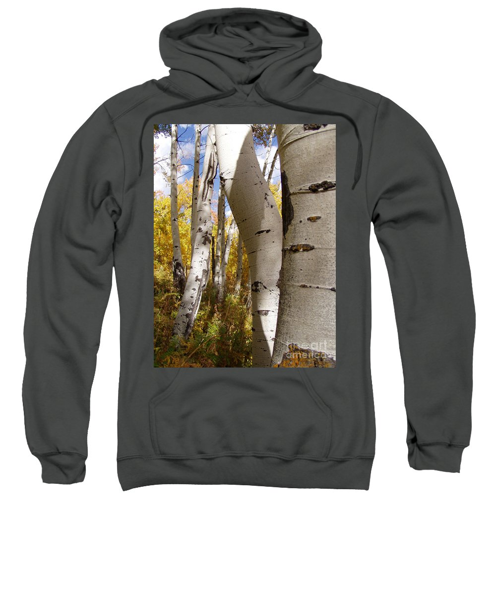 Trees Sweatshirt featuring the photograph Jackson Hole Wyoming by Amanda Barcon